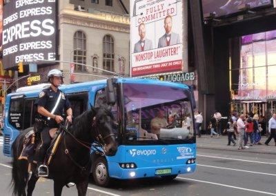10_NY_HorsePolice_DSC08637